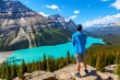 Teen atop Bow Summit Overlooking Peyto Lake in Banff National Park on the Icefields Parkway