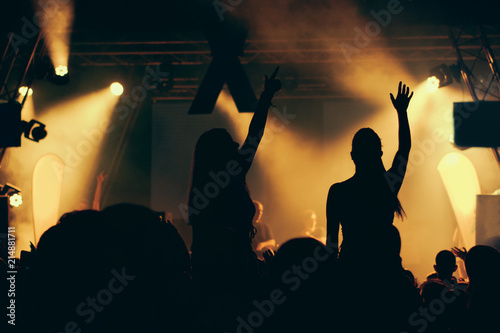 Silhouettes of concert crowd in front of bright stage lights - 214881711