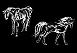 two horses sketches isolated on black