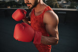 cropped image of boxer training with boxing gloves on roof - 214912997