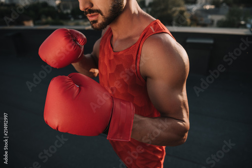 cropped image of boxer training with boxing gloves on roof