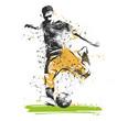giocatore di calcio che tira il pallone