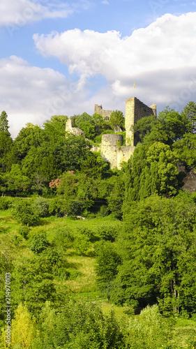 Wall mural Château de Badenweiler - Forêt Noire