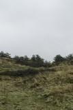 Landschaft Insel Nordsee Winter