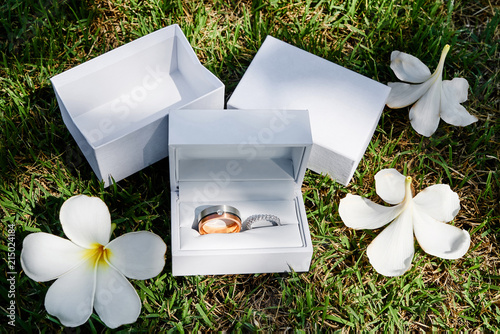 Canvas Plumeria Wedding rings in the white box on the grass, plumeria flowers, petals surround with shade of sun light