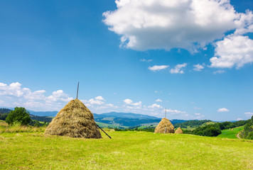 Haystacks on the grassy field. beautiful summer weather. lovely rural area in mountains