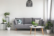 Quadro Real photo of a simple living room interior with a grey sofa, plants and coffee table