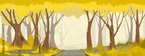 Autumn forest with road. vector backround - 215094175