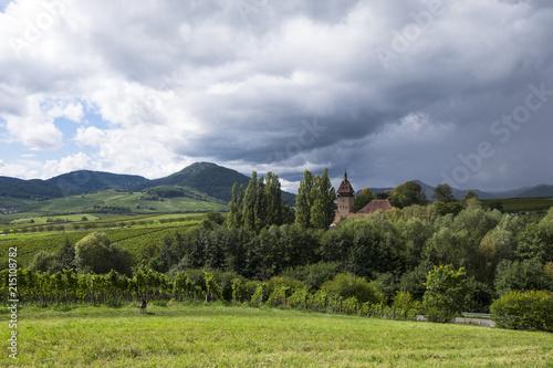 Leinwanddruck Bild Landschaft in der Südpfalz