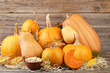Quadro Orange pumpkins with dry leafs and seeds on grey wooden table