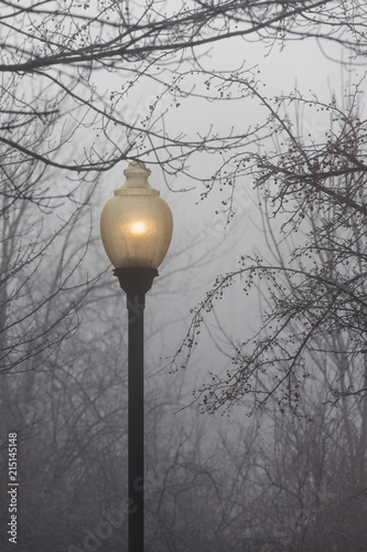 A glowing old fashioned street lamp on a foggy day