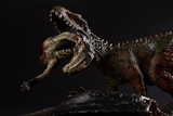 Carcharodontosaurus with a dinosaur body nearby on dark background close up