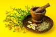 St. John's wort, herbal medical pills.