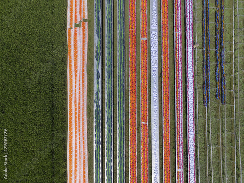 Colorful fabric hanging to dry after traditional process Brid eye view, in Mojolaban