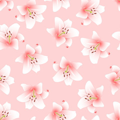 Pink Lily on Light Pink Background