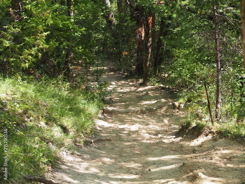 Foto Spatwand Weg in bos Pathway in the forest of the colorado of Rustrel, France