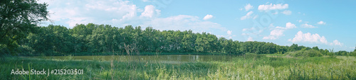 Panorama of forest landscape. Meadow, lake and forest - 215203501