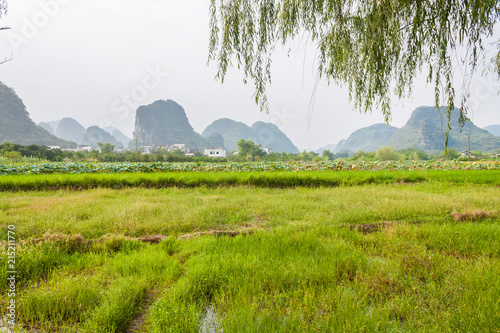 Fotobehang Guilin Scenic park of Shiwai Taoyuan, Guilin, China