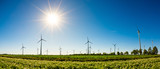 Panorama of a summer landscape with many wind turbines, green fields and bright sun - 215221782