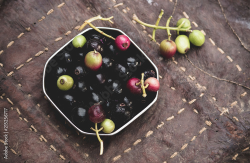 Foto Spatwand Kersen Berries