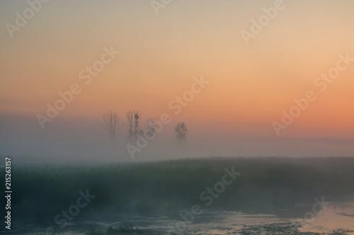 Biebrza Natural Park - foggy sunrise over Biebrza river.