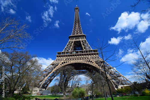 Wall mural The iconic Eiffel Tower in Paris, as taken from the Champ Du Mars on a spring day