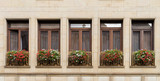 Flower boxes full of geraniums in front of windows in Bratislava.
