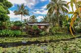 Teahupoo Tahiti - 215323960