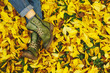 Leinwanddruck Bild - Shoes in yellow autumn leaves