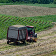 Square - dairy farmer harvesting haylage