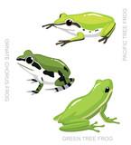 Frog Tree Frog Set Cartoon Vector Illustration