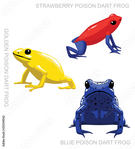 Frog Poison Dart Frog Set Cartoon Vector Illustration