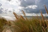 Beach of Sylt - 215360746