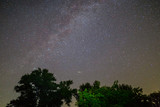 night starry sky with milky way above th oak trees - 215387385