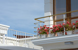 Corner of balcony with flowers in vases near metal handrail. - 215424733