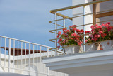 Corner of balcony with flowers in vases near metal handrail. - 215424736