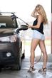 Quadro sexy girl wash the car