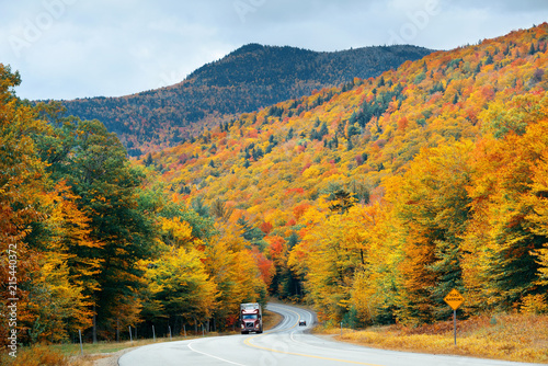 Foto Spatwand Honing Highway and Autumn foliage