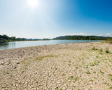Dried-out riverbed between groins, Rhine, North Rhine-Westphalia, Germany