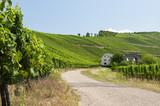 droga w gospodarstwie wiejskim
