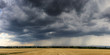 Dramatic thundercloud over a wheat field
