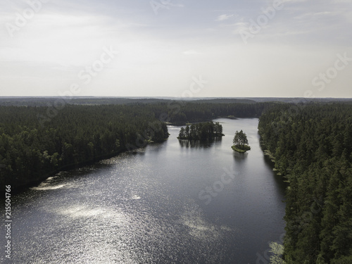 Foto Spatwand Grijs Aerial view near forest lake, Estonia, Viitna