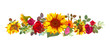 Horizontal autumn's border: orange, yellow sunflowers, red roses, gerbera daisy flowers, small green twigs on white background. Digital draw, illustration in watercolor style, panoramic view, vector