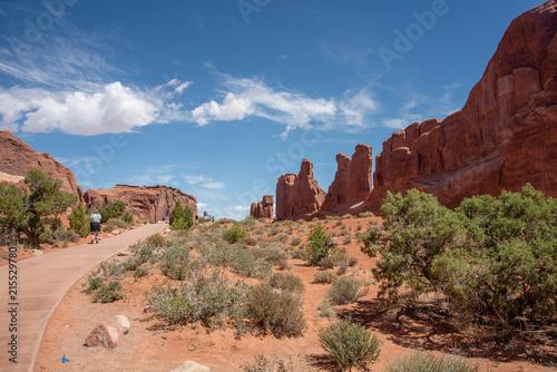 Foto Spatwand Zalm Path in Desert