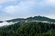 Leinwanddruck Bild - Germany, Mystic black forest nature landscape