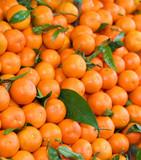 background of orange Sicilian clementines
