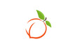 Peach Orange Logo Design Illustration - 215565735