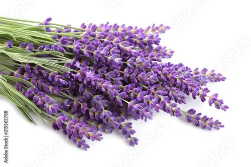 Lavender. - 215565788