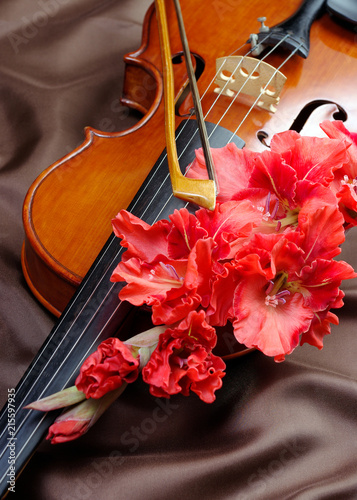gladiolus and violin. violin and flowers on a silk background. - 215597935