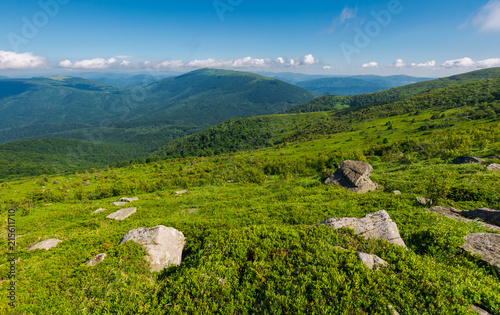 Foto Spatwand Zomer beautiful summer landscape in mountains. green grassy hillside and blue mountains in the distance. stunning nature background